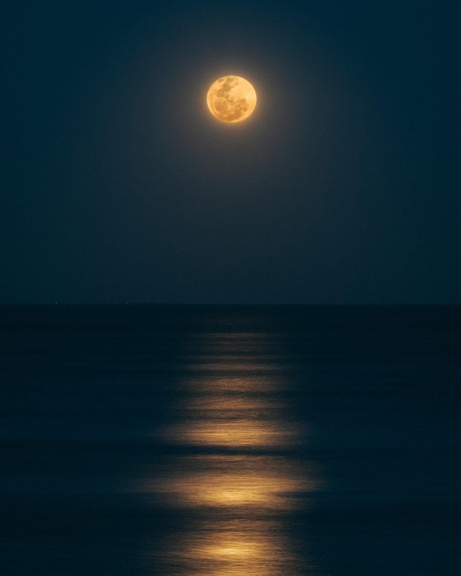 شعر عاشقانه کوچه یا بی تو مهتاب شبی باز از آن کوچه گذشتم فریدون مشیری