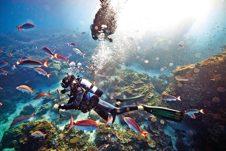 تجربه غواصی زیر آب های نیلگون