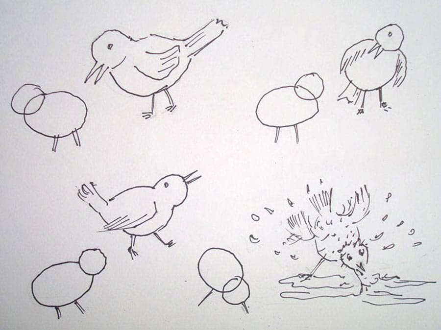 طرح اولیه گنجشک ها