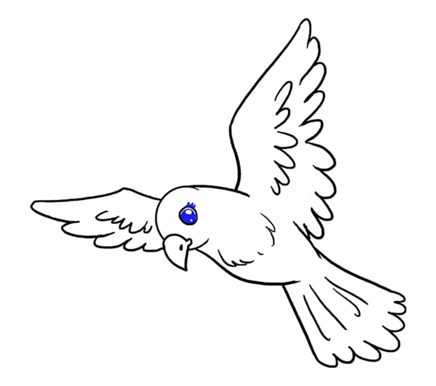 نقاشی مژهها پرنده