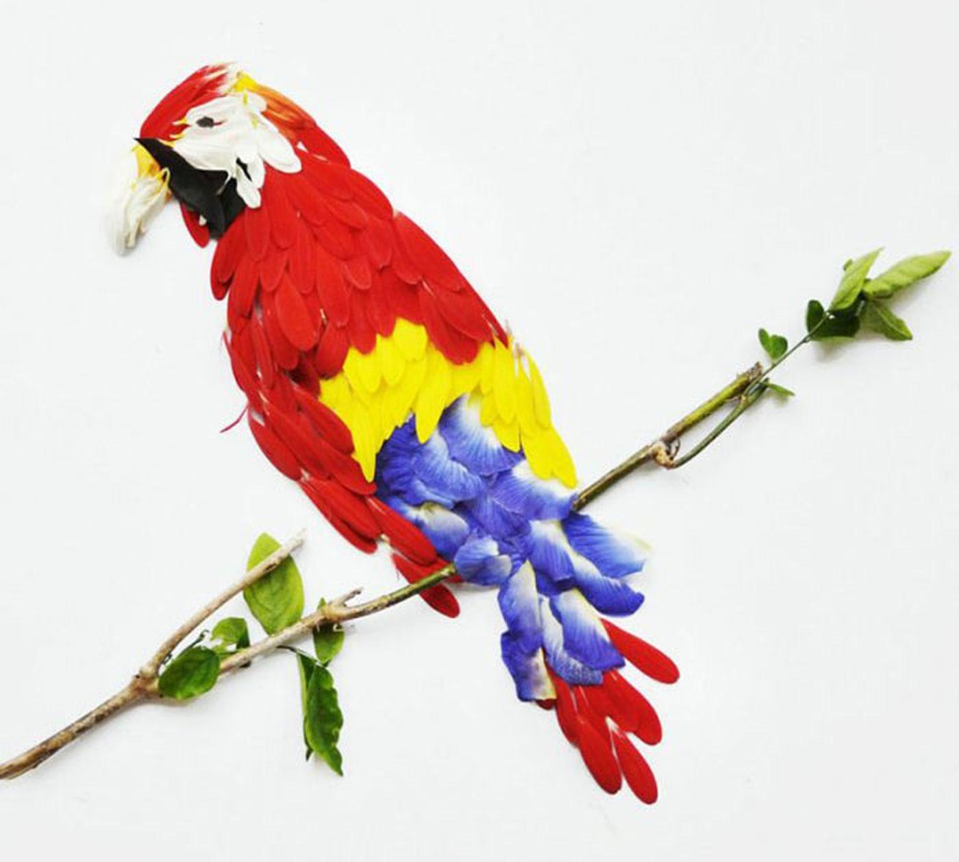 اموزش رنگ میزی پر پرندگان