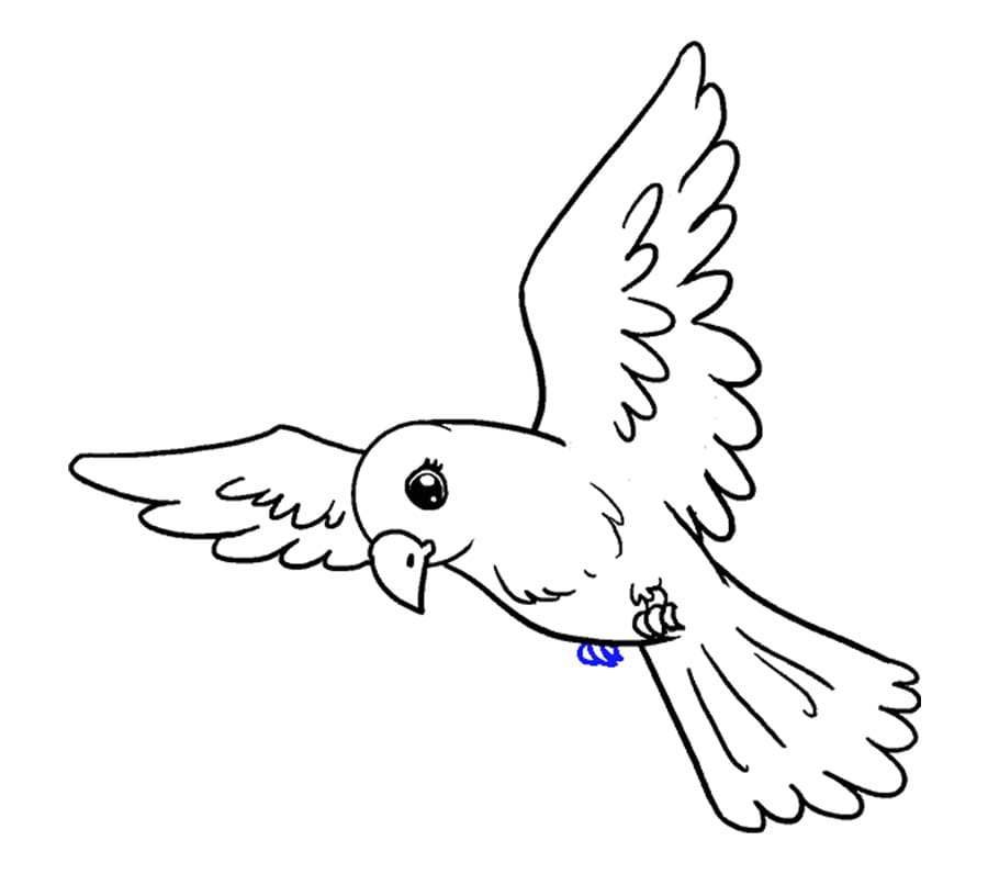 کشیدن شکل پرنده