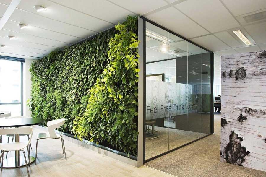 ساخت دیوار سبز در محل کار