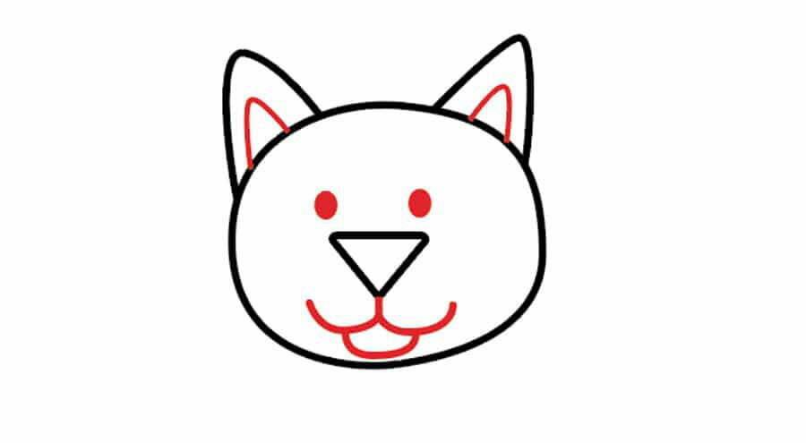 تکمیل صورت گربه