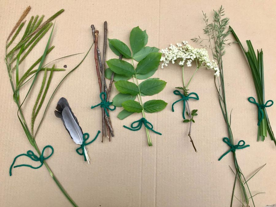 آموزش نقاشی کودکانه با استفاده از گیاهان