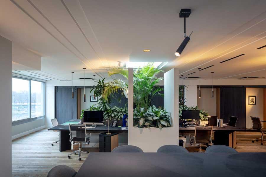استفاده از نور طبیعی در محیط کار