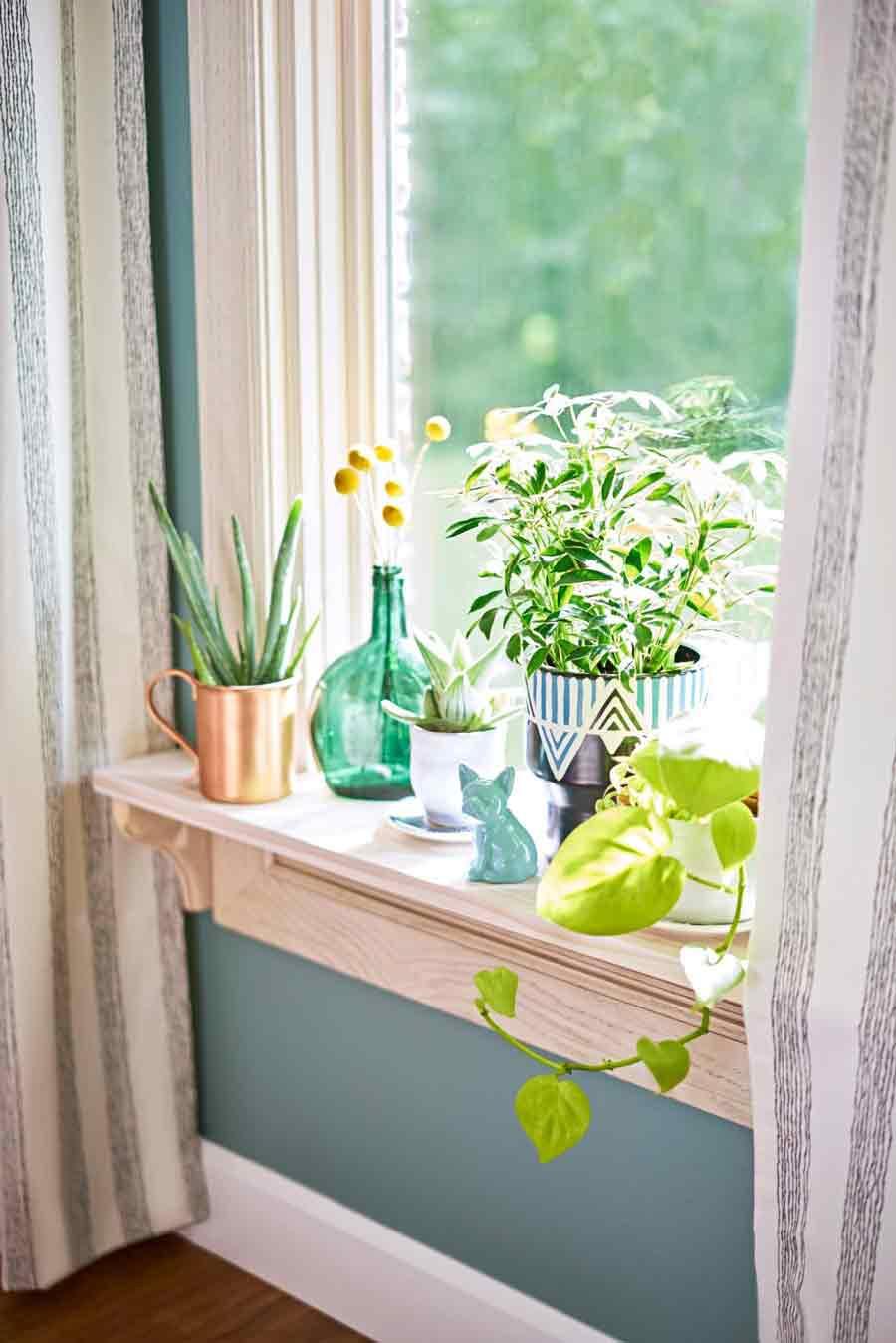 باغچه در خانه