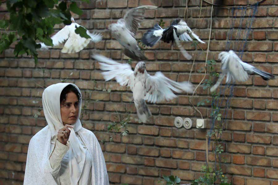 فائزه منصوری همسر برادر ریگی